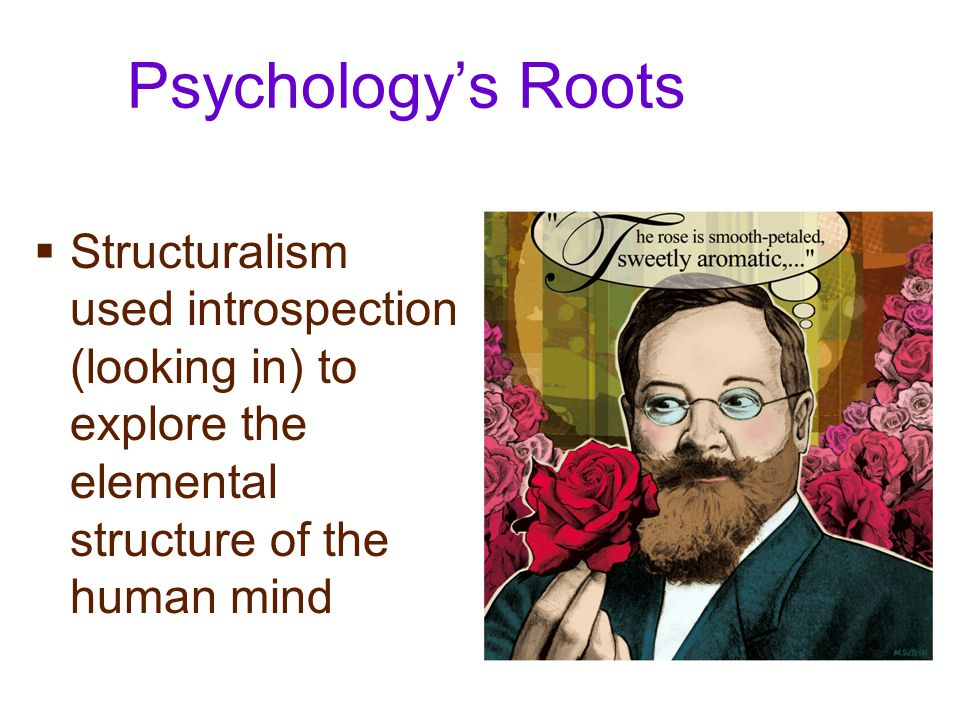 Psychology's Roots  Functionalism focused on how behavioral processes function- how they enable organism to adapt, survive, and flourish