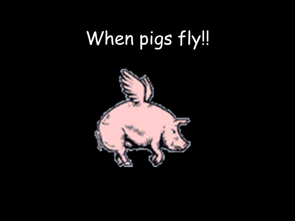 When pigs fly!!
