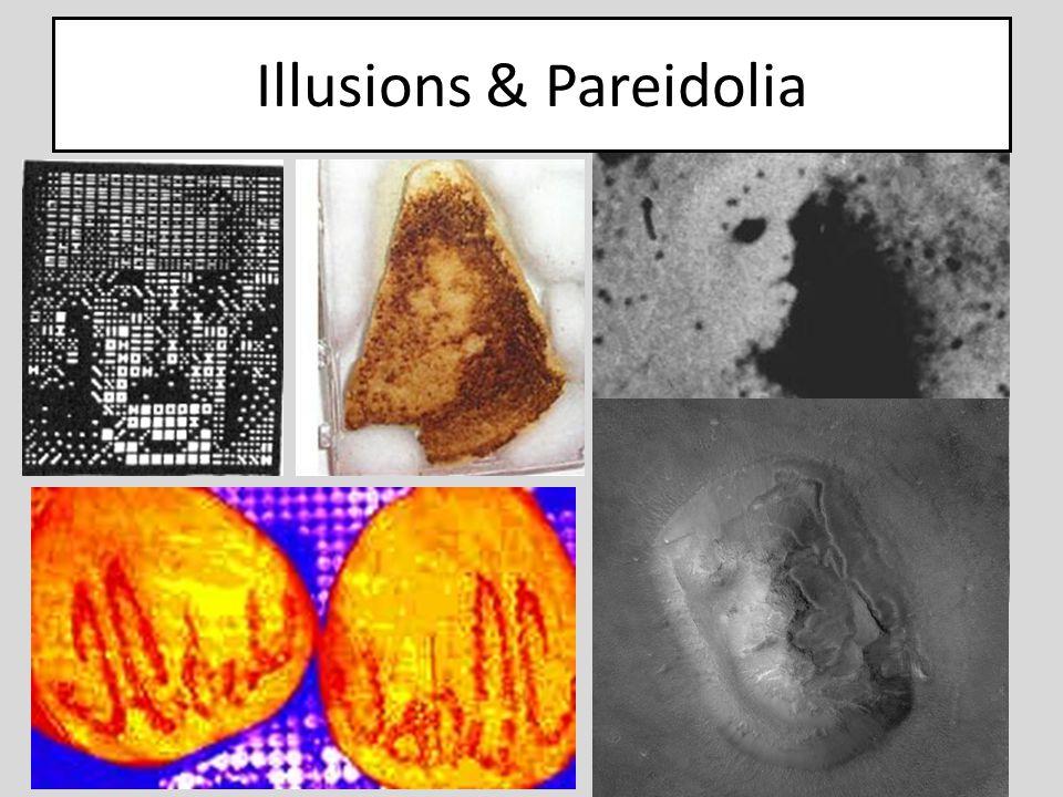 Illusions & Pareidolia