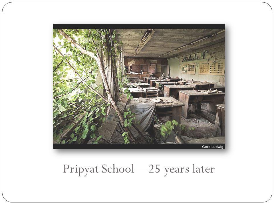 Pripyat School—25 years later