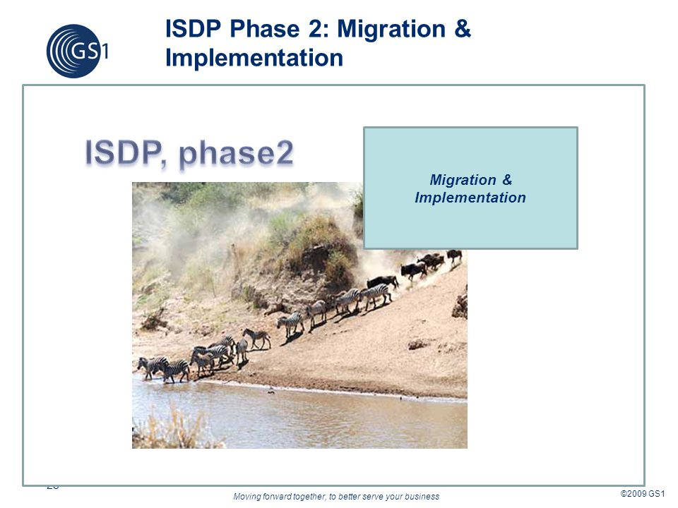 Moving forward together, to better serve your business ©2009 GS1 28 ISDP Phase 2: Migration & Implementation Migration & Implementation
