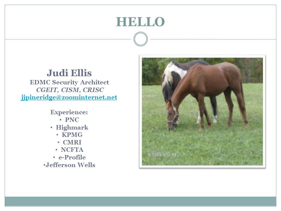 HELLO Judi Ellis EDMC Security Architect CGEIT, CISM, CRISC jjpineridge@zoominternet.net Experience: PNC Highmark KPMG CMRI NCFTA e-Profile Jefferson Wells
