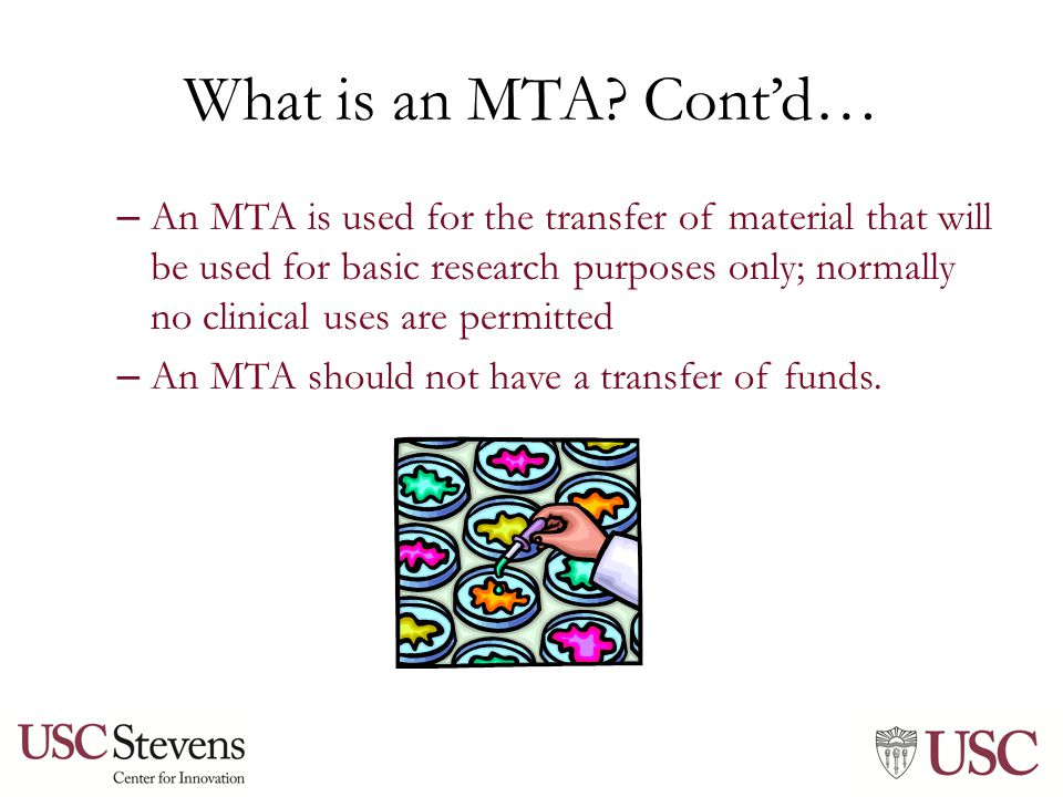 Why is the MTA important.