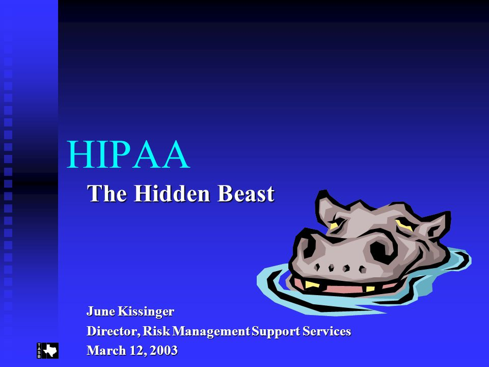 HIPAA The Hidden Beast June Kissinger Director, Risk Management Support Services March 12, 2003