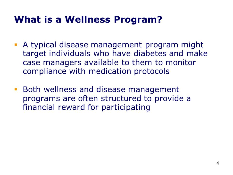 What is a Wellness Program.