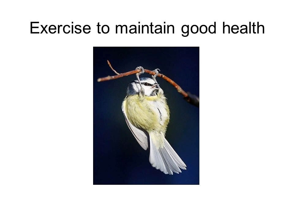Exercise to maintain good health