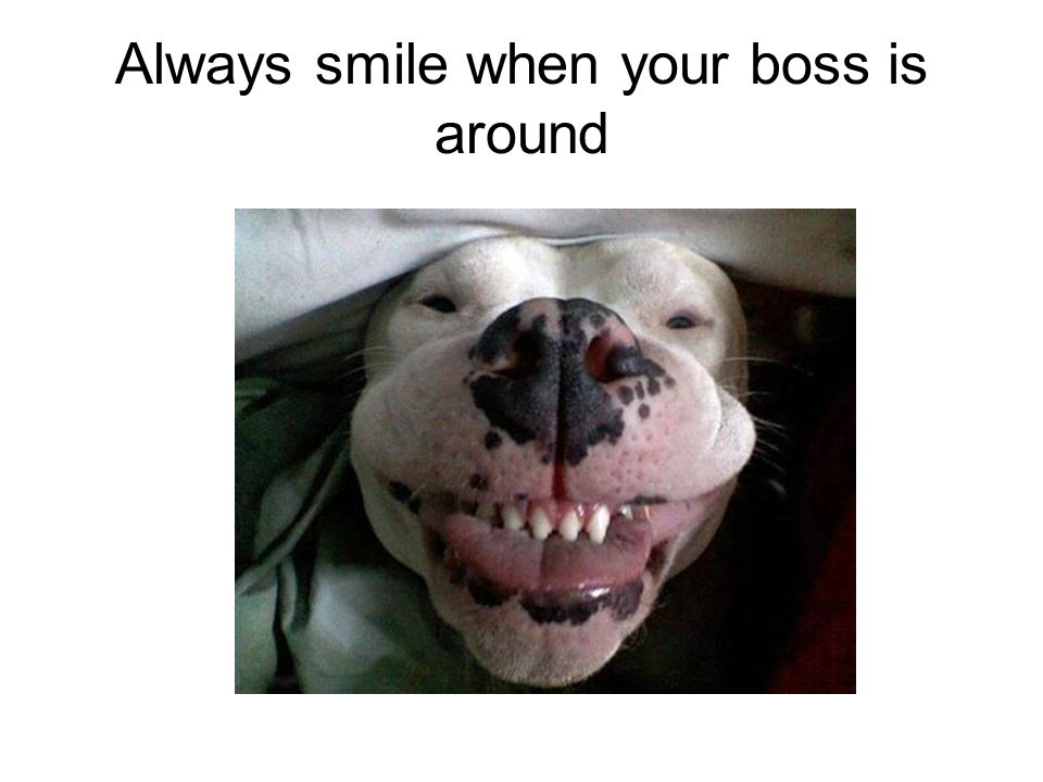 Always smile when your boss is around