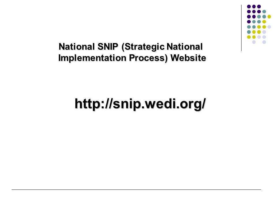 http://snip.wedi.org/ National SNIP (Strategic National Implementation Process) Website