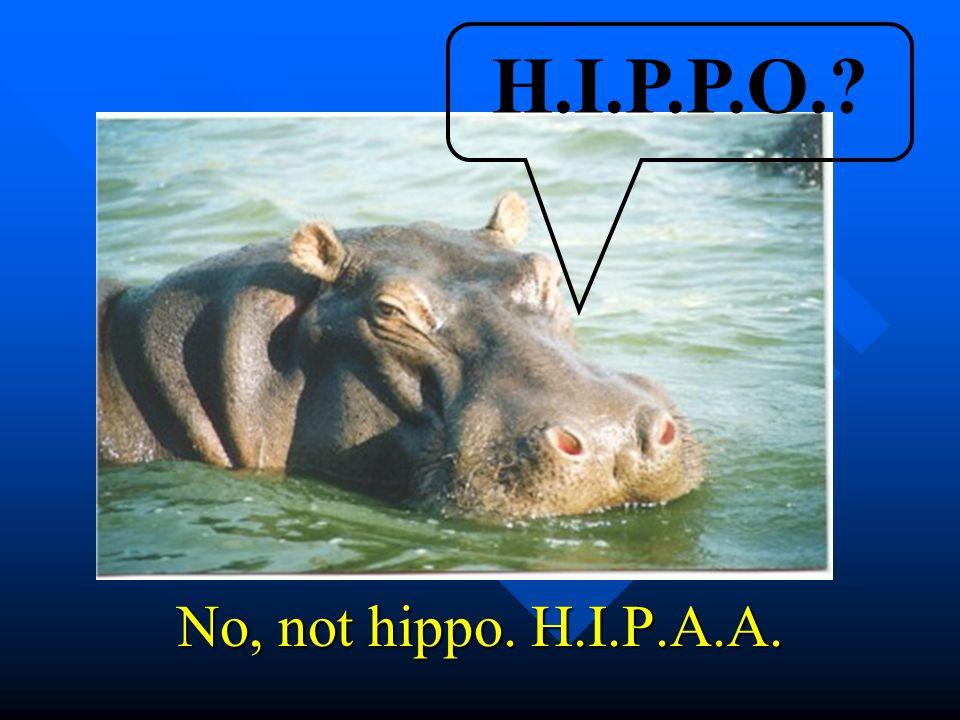 No, not hippo. H.I.P.A.A. H.I.P.P.O.