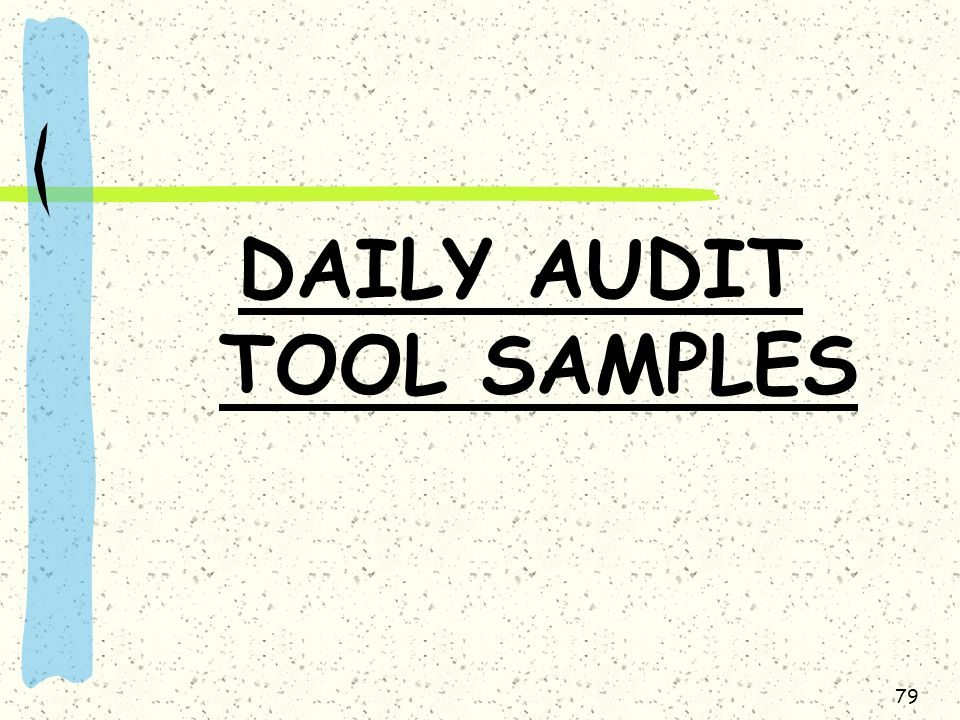 79 DAILY AUDIT TOOL SAMPLES