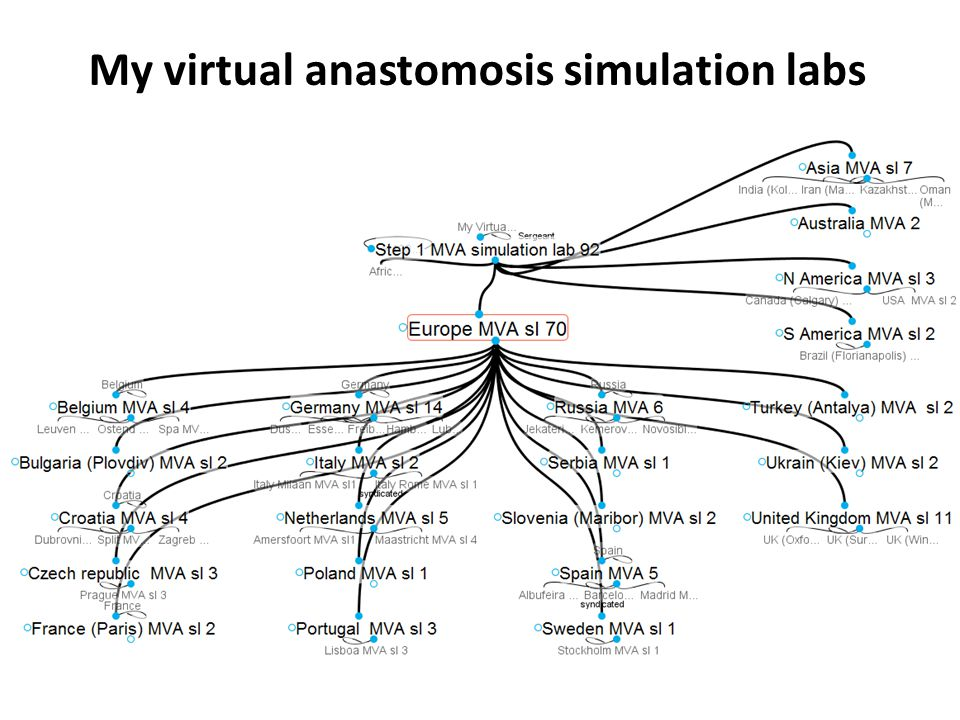 My virtual anastomosis simulation labs