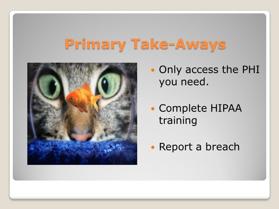 Primary Take-Aways Only access the PHI you need. Complete HIPAA training Report a breach