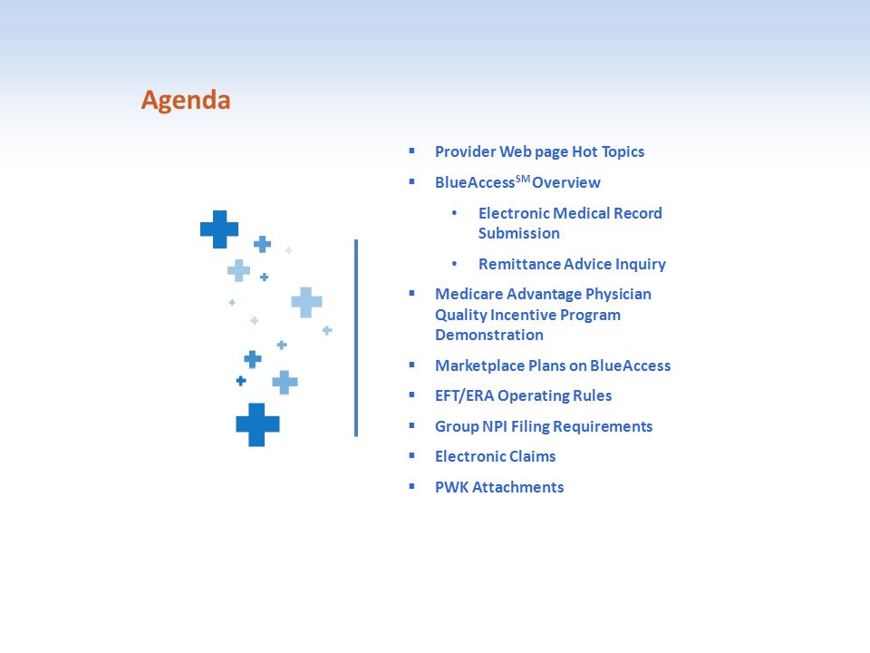 Agenda  Provider Web page Hot Topics  BlueAccess SM Overview Electronic Medical Record Submission Remittance Advice Inquiry  Medicare Advantage Phy