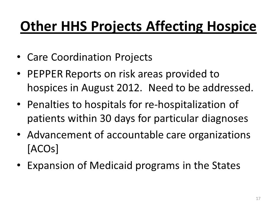 Other HHS Projects Affecting Hospice Care Coordination Projects PEPPER Reports on risk areas provided to hospices in August 2012.