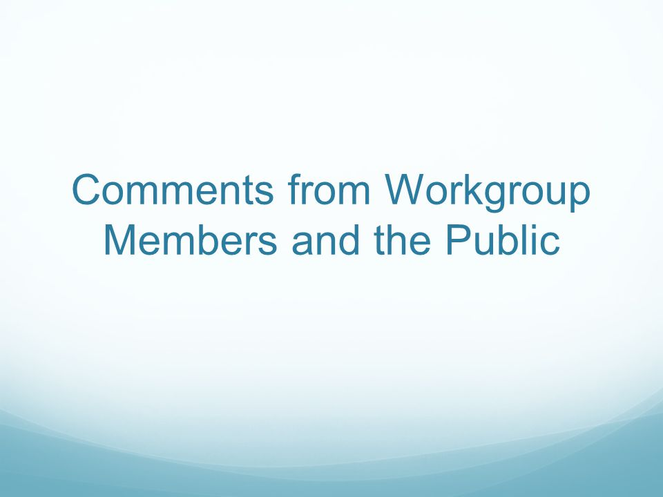 Comments from Workgroup Members and the Public