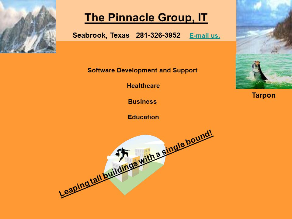 The Pinnacle Group, IT Software Development and Support Healthcare Business Education Seabrook, Texas 281-326-3952 E-mail us.