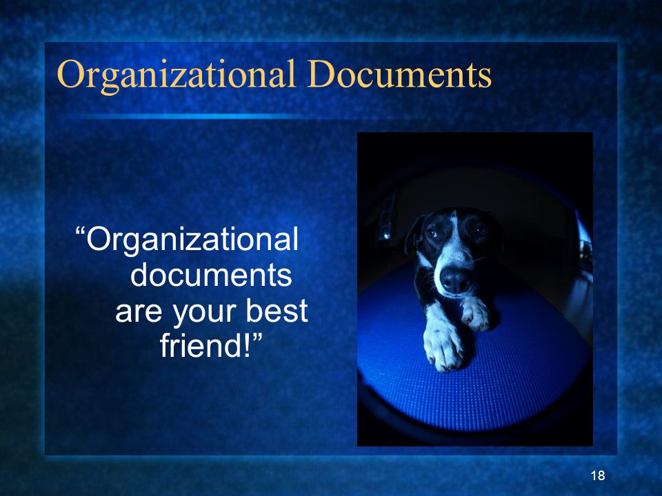 "18 Organizational Documents ""Organizational documents are your best friend!"""