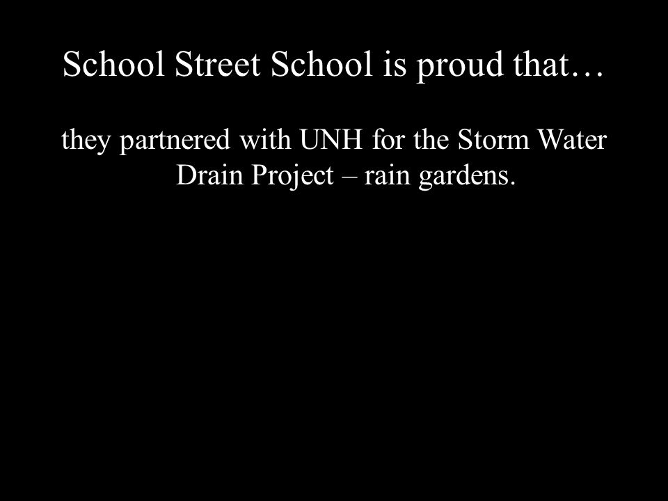 School Street School is proud that… they partnered with UNH for the Storm Water Drain Project – rain gardens.