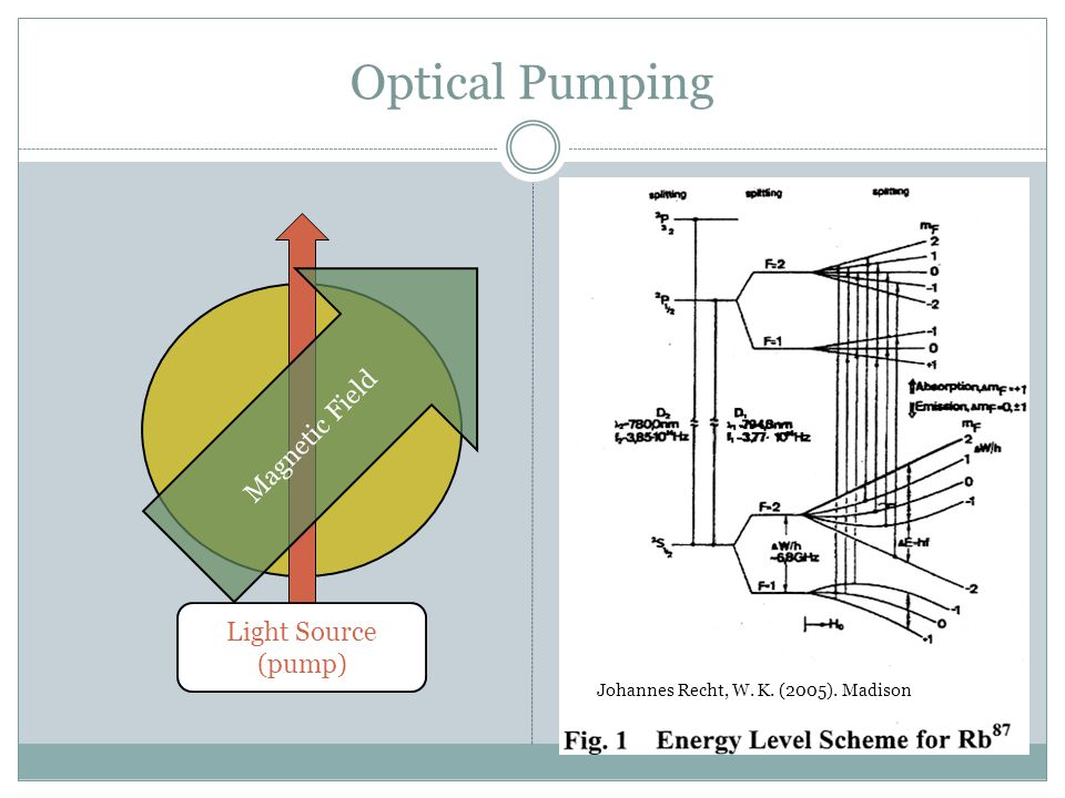 Optical Pumping Causes atomic polarization to precess Rochester and Budker (2001).