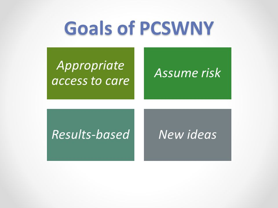 Goals of PCSWNY Appropriate access to care Assume risk Results-basedNew ideas