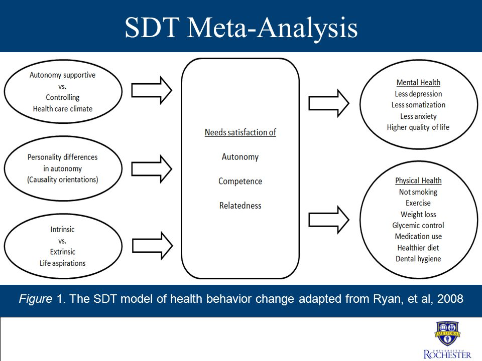 SDT Meta-Analysis Figure 1. The SDT model of health behavior change adapted from Ryan, et al, 2008