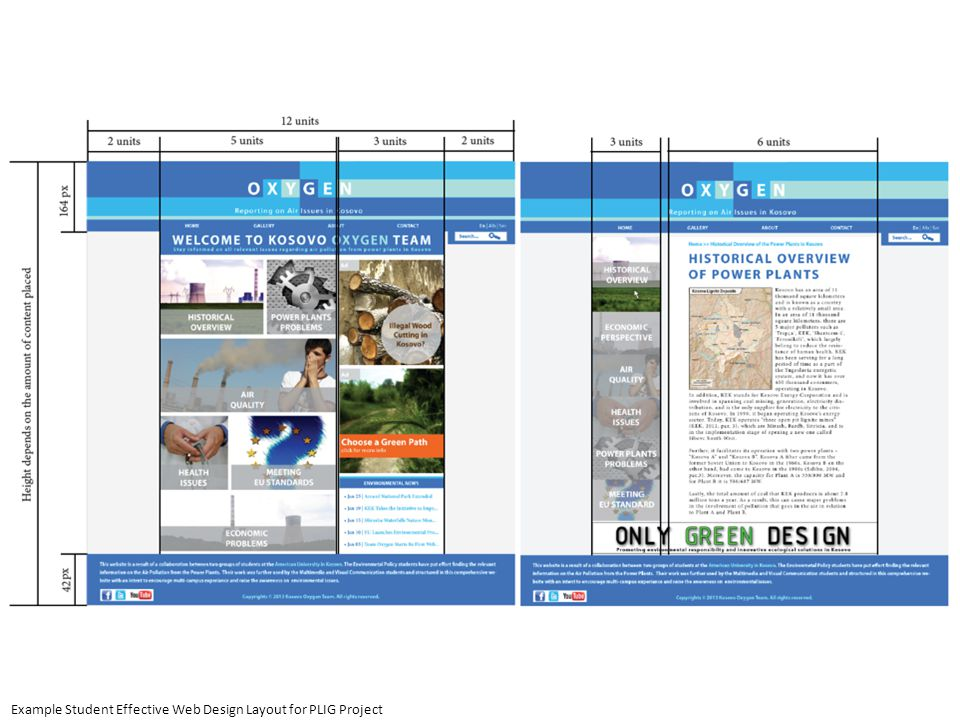 Example Student Effective Web Design Layout for PLIG Project