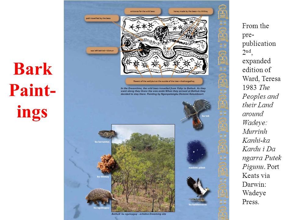 Bark Paint- ings From the pre- publication 2 nd, expanded edition of Ward, Teresa 1983 The Peoples and their Land around Wadeye: Murrinh Kanhi-ka Kardu i Da ngarra Putek Pigunu.