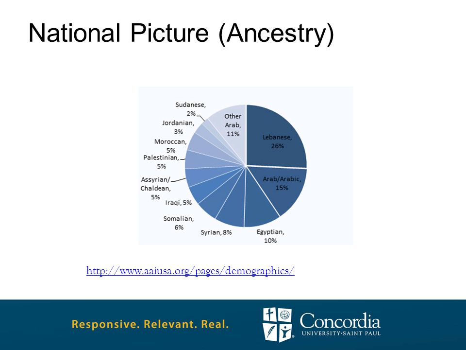 National Picture (Ancestry) http://www.aaiusa.org/pages/demographics/