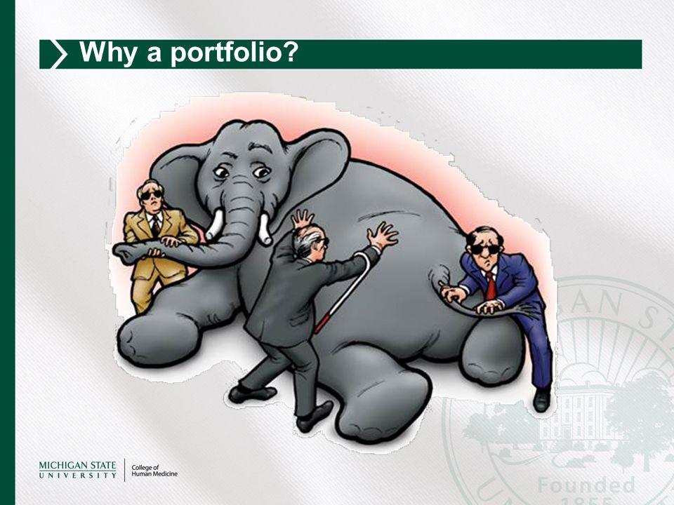 Why a portfolio?