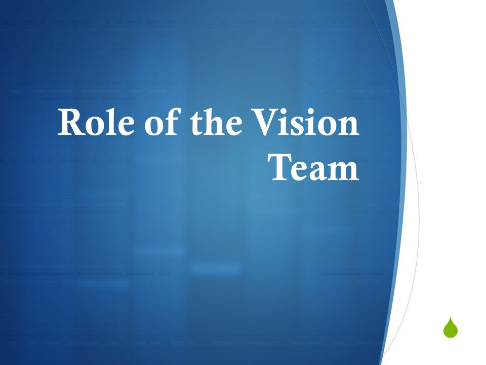  Role of the Vision Team
