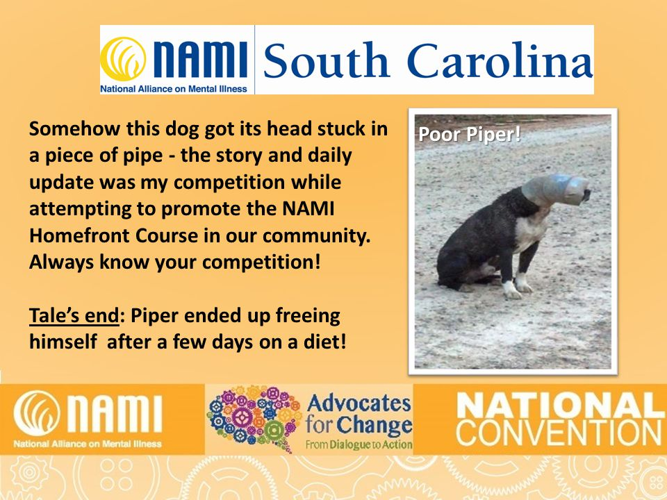 Title of Slide Somehow this dog got its head stuck in a piece of pipe - the story and daily update was my competition while attempting to promote the NAMI Homefront Course in our community.