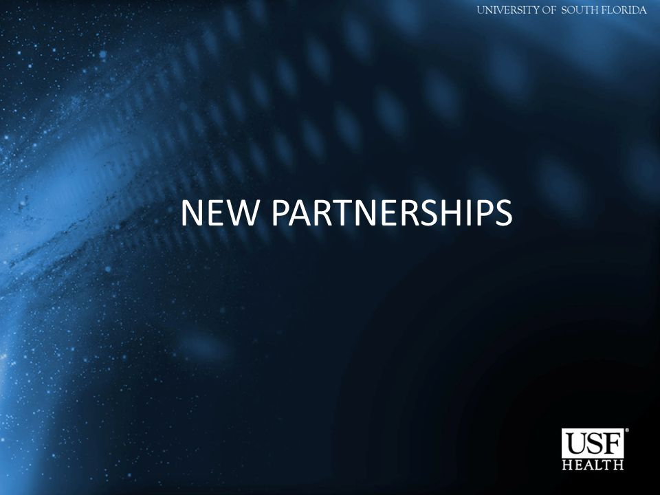 NEW PARTNERSHIPS