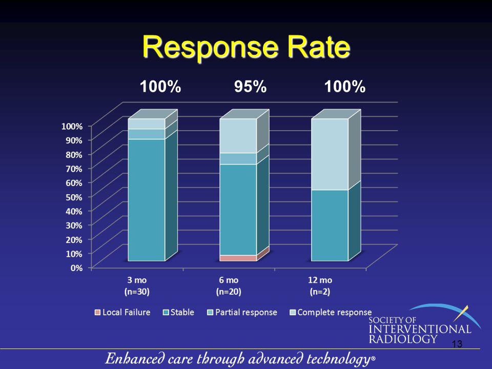 Response Rate 100% 95% 13