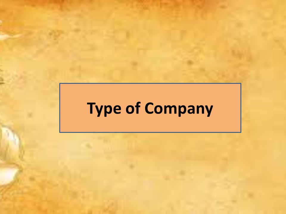 Type of Company
