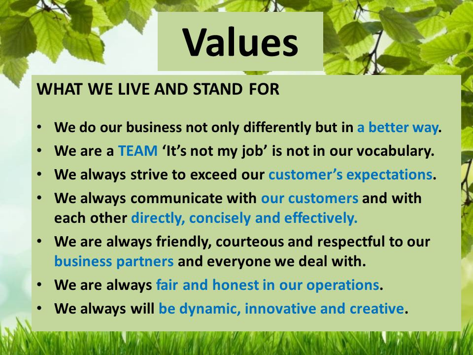 Values WHAT WE LIVE AND STAND FOR We do our business not only differently but in a better way.