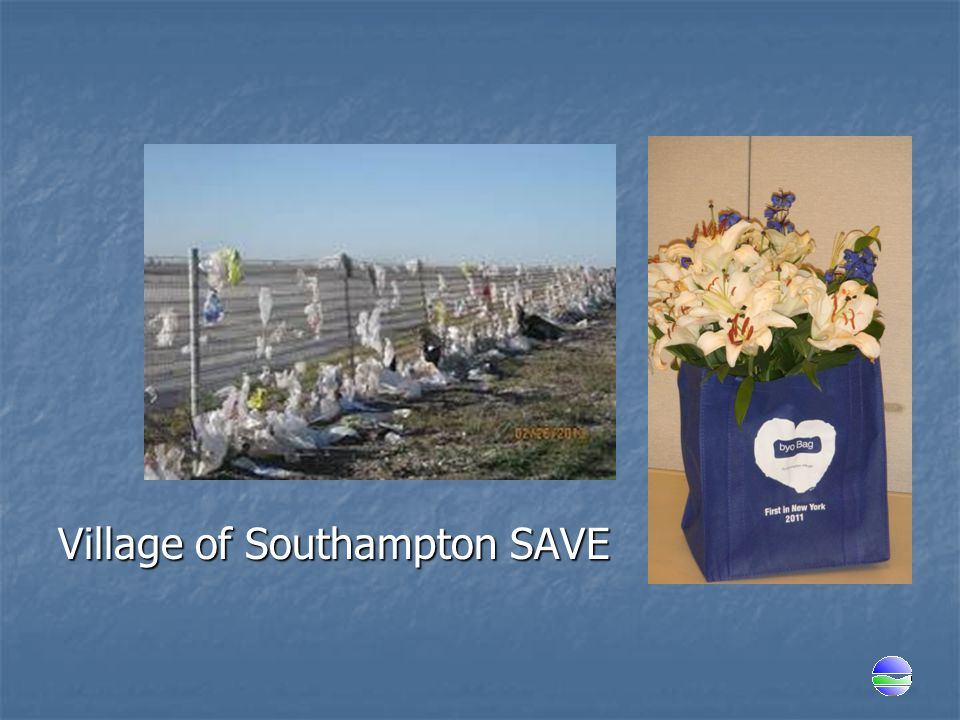 Village of Southampton SAVE