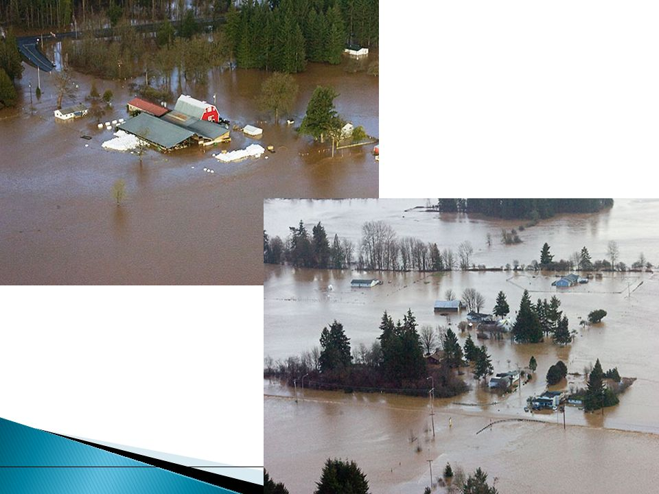  The FA has commissioned an economic analysis  The economic impacts of flood damage, disruption to lives and commerce, and flood insurance costs will be documented  Analysis will underscore importance of reducing flood impacts within the Chehalis River Basin to the economies of the region and state 18 Chehalis River Basin Flood District Formation