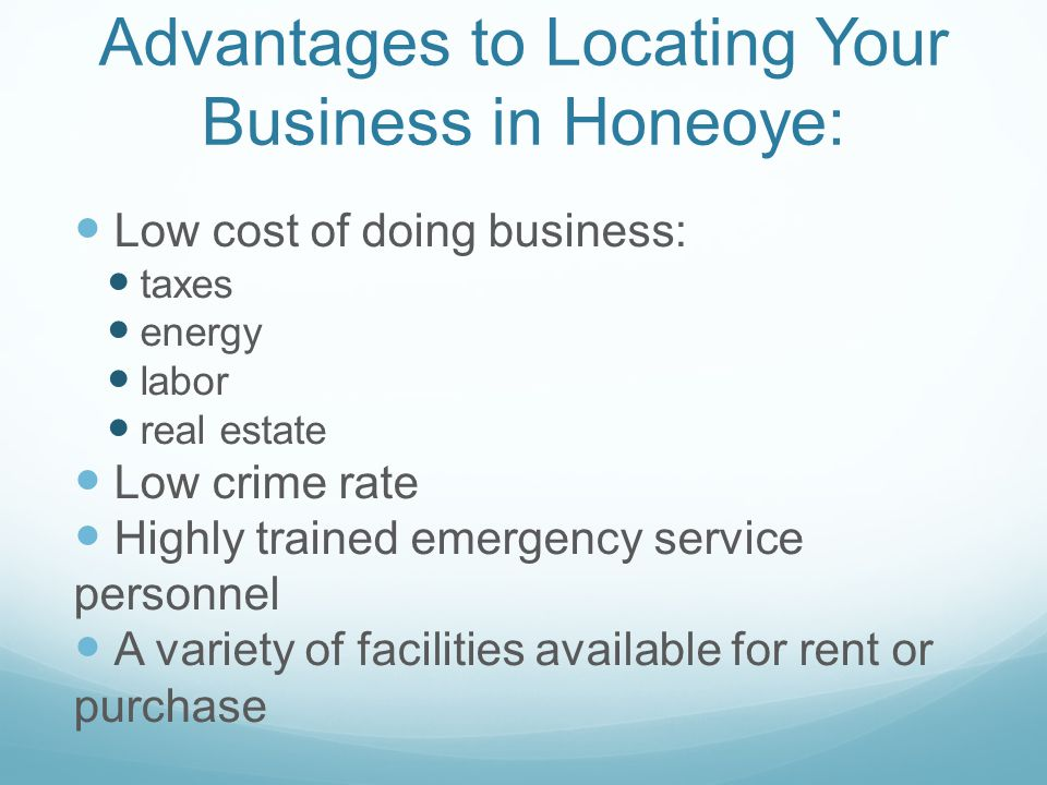 Advantages to Locating Your Business in Honeoye: Low cost of doing business: taxes energy labor real estate Low crime rate Highly trained emergency service personnel A variety of facilities available for rent or purchase