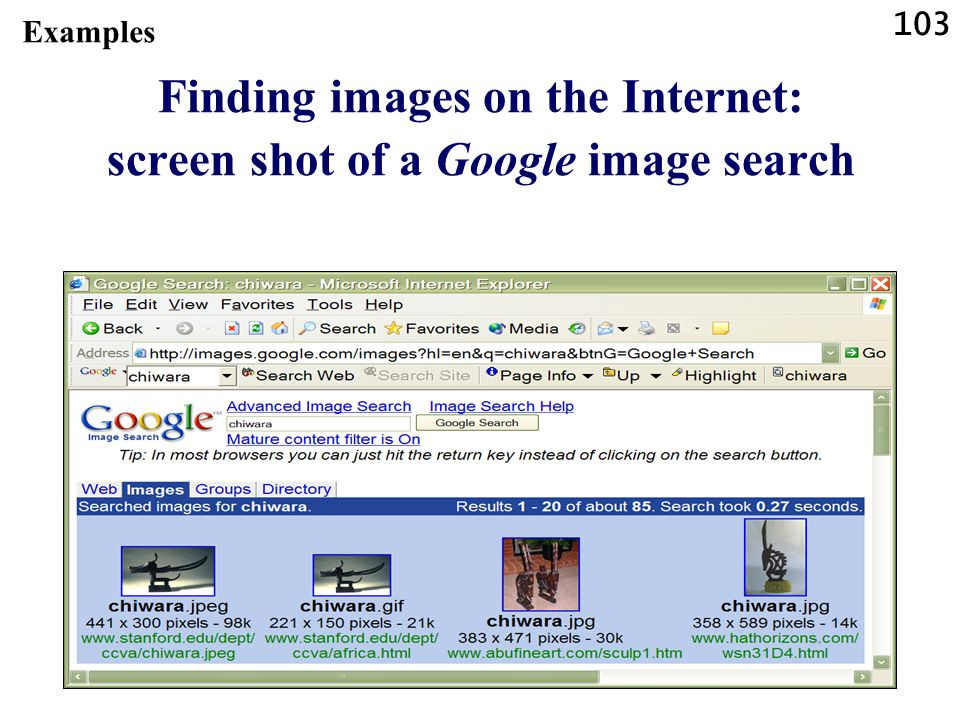 103 Examples Finding images on the Internet: screen shot of a Google image search