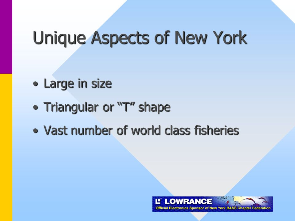 Unique Aspects of New York Large in sizeLarge in size Triangular or T shapeTriangular or T shape Vast number of world class fisheriesVast number of world class fisheries