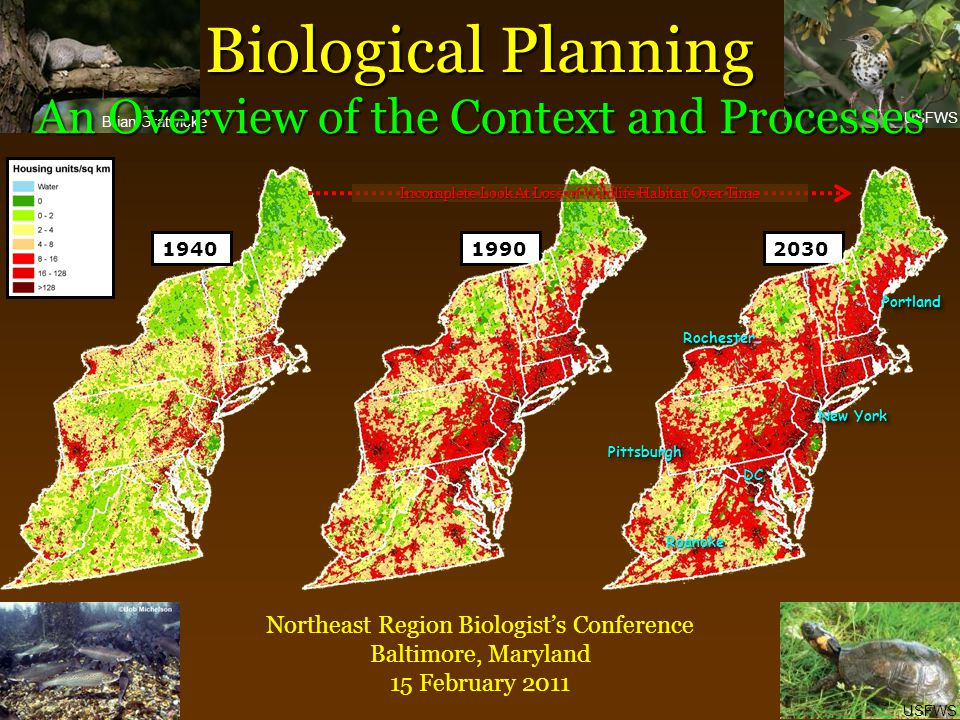 Brian Gratwicke USFWS Biological Planning An Overview of the Context and Processes Northeast Region Biologist's Conference Baltimore, Maryland 15 Febr