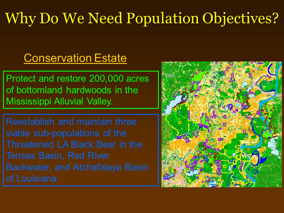 Why Do We Need Population Objectives? Conservation Estate Protect and restore 200,000 acres of bottomland hardwoods in the Mississippi Alluvial Valley