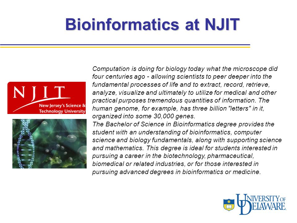 Bioinformatics at NJIT Computation is doing for biology today what the microscope did four centuries ago - allowing scientists to peer deeper into the