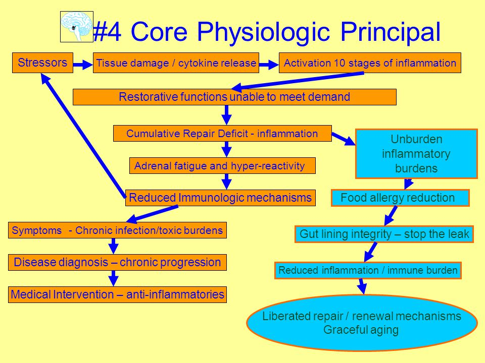 15 Stressors Tissue damage / cytokine releaseActivation 10 stages of inflammation Restorative functions unable to meet demand Cumulative Repair Deficit - inflammation Liberated repair / renewal mechanisms Graceful aging #4 Core Physiologic Principal Adrenal fatigue and hyper-reactivity Reduced Immunologic mechanisms Gut lining integrity – stop the leak Symptoms - Chronic infection/toxic burdens Food allergy reduction Disease diagnosis – chronic progression Medical Intervention – anti-inflammatories Reduced inflammation / immune burden Unburden inflammatory burdens