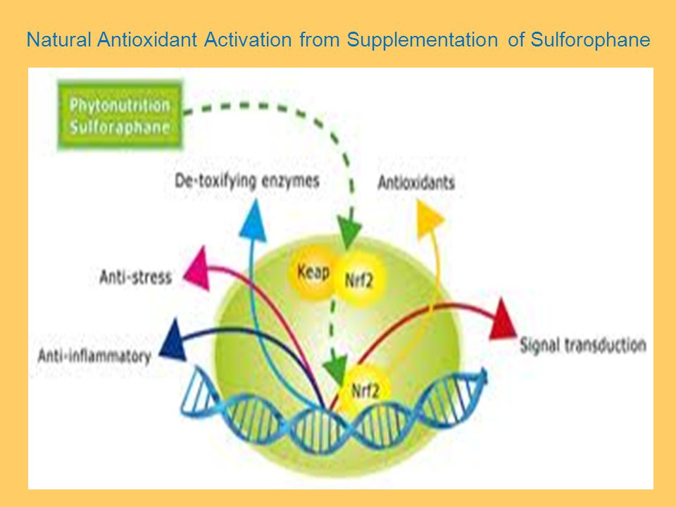 Natural Antioxidant Activation from Supplementation of Sulforophane