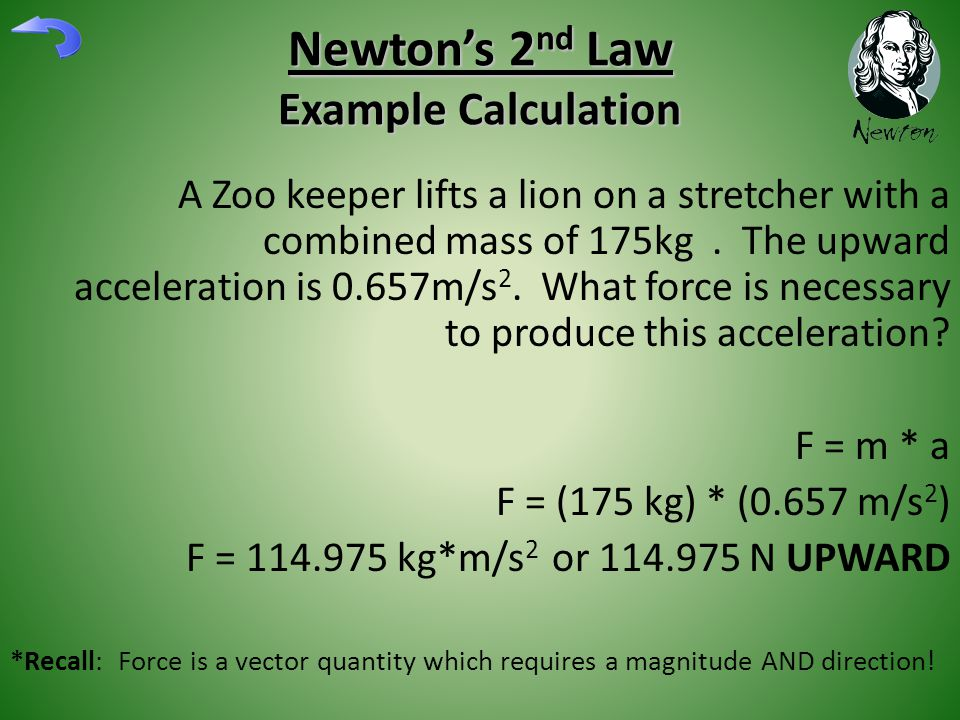 Newton's 2 nd Law Example Calculation A Zoo keeper lifts a lion on a stretcher with a combined mass of 175kg. The upward acceleration is 0.657m/s 2. W