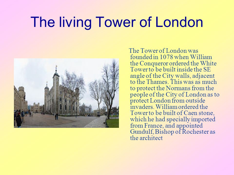 The living Tower of London The Tower of London was founded in 1078 when William the Conqueror ordered the White Tower to be built inside the SE angle of the City walls, adjacent to the Thames.