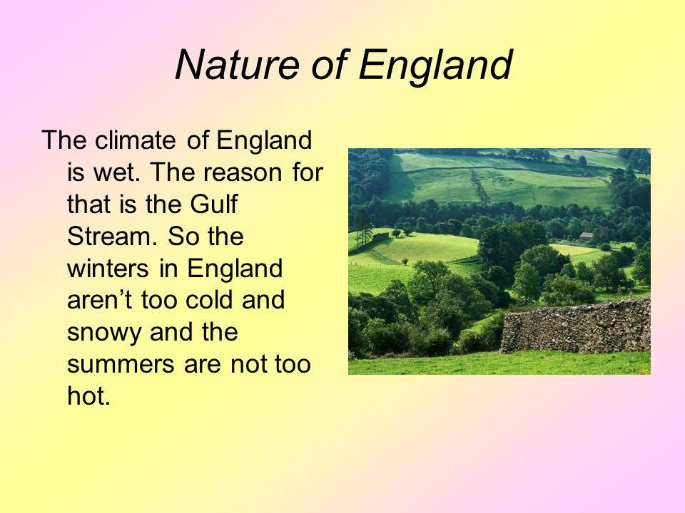 Nature of England The climate of England is wet. The reason for that is the Gulf Stream.