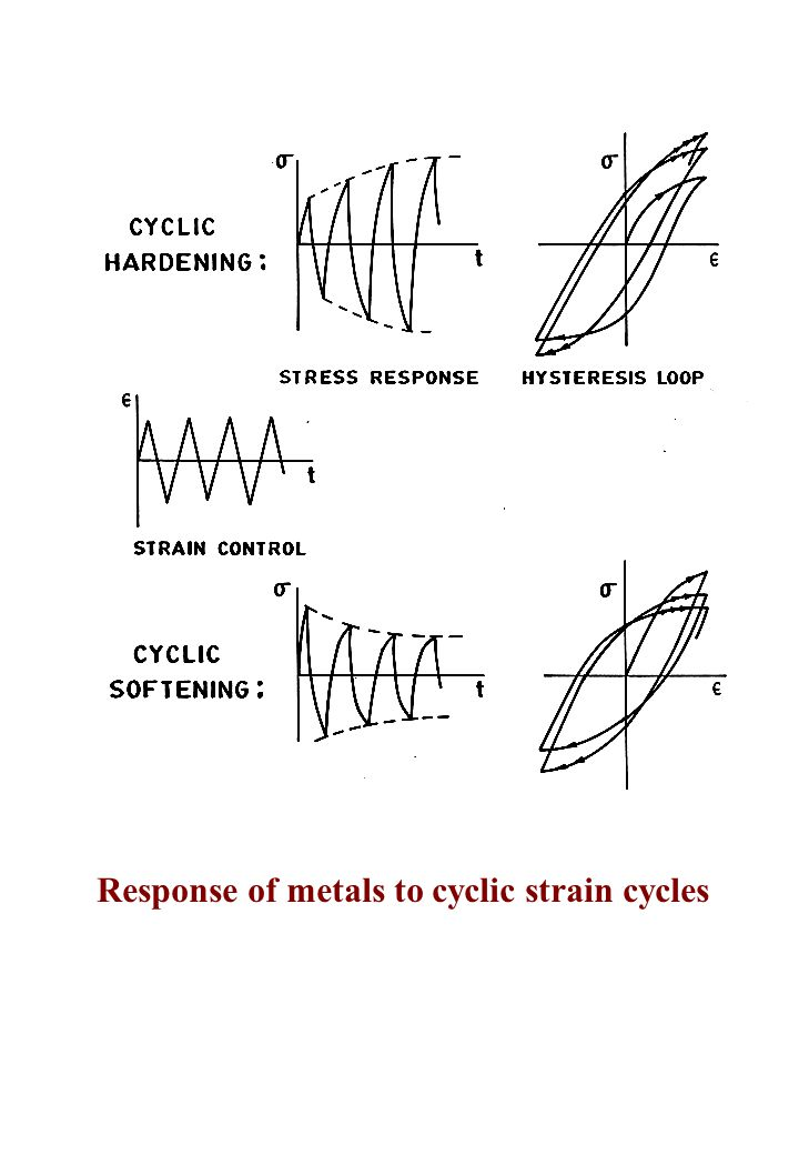 Response of metals to cyclic strain cycles