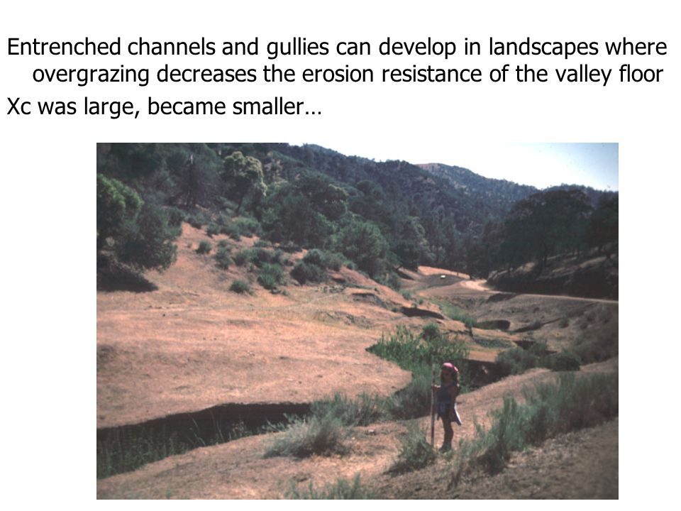 Entrenched channels and gullies can develop in landscapes where overgrazing decreases the erosion resistance of the valley floor Xc was large, became smaller…
